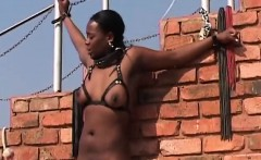 hairy african bitch, naughty outdoor xxx domination