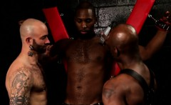 Buff ebony assfucking in interracial threeway