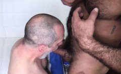 Big muscular bears with strong dicks railing hard at home