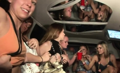 Gorgeous girls know how to party hard